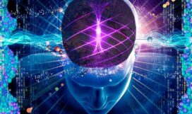 il-potere-del-cervello-quantico-850x500